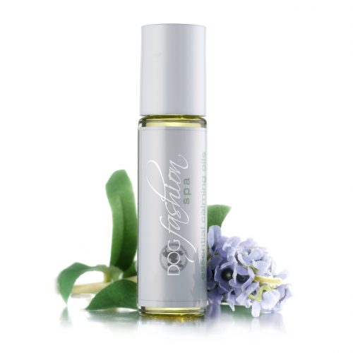 essential calming oils for dog relaxation to help uneasy or nervous dogs